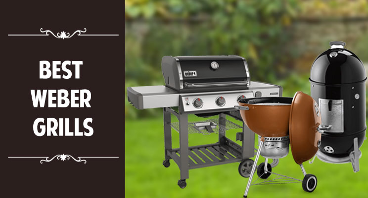 best-weber-grills-reviews